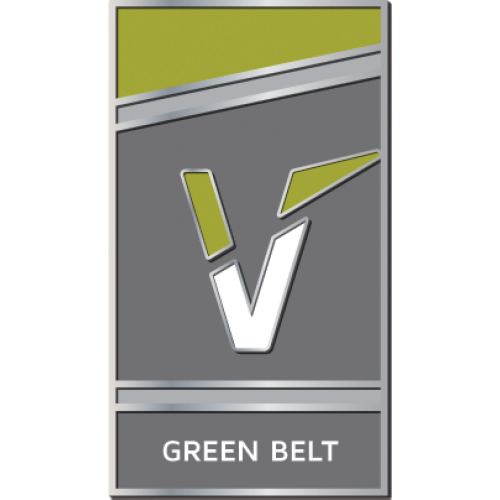 Green Belt Pin